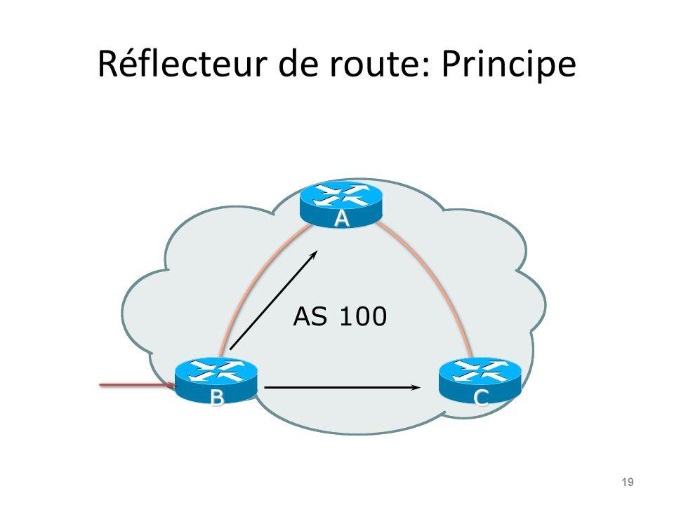 Réflecteur de route: Principe 19 AS 100 A CB
