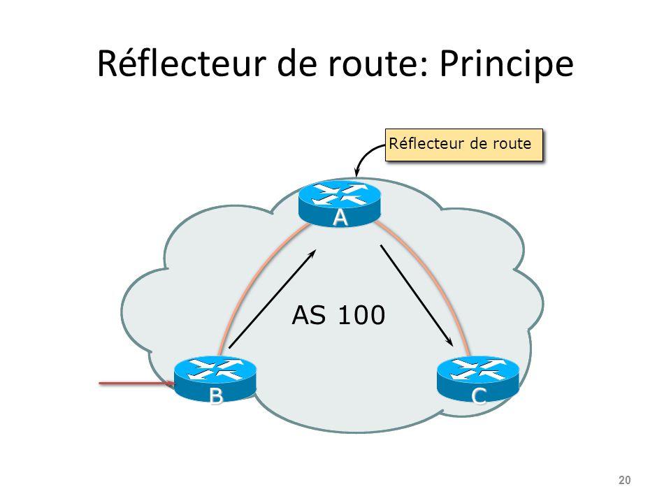 Réflecteur de route: Principe 20 AS 100 A CB Réflecteur de route