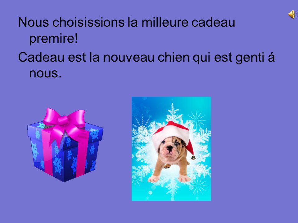 Nous choisissions la milleure cadeau premire! Cadeau est la nouveau chien qui est genti á nous.