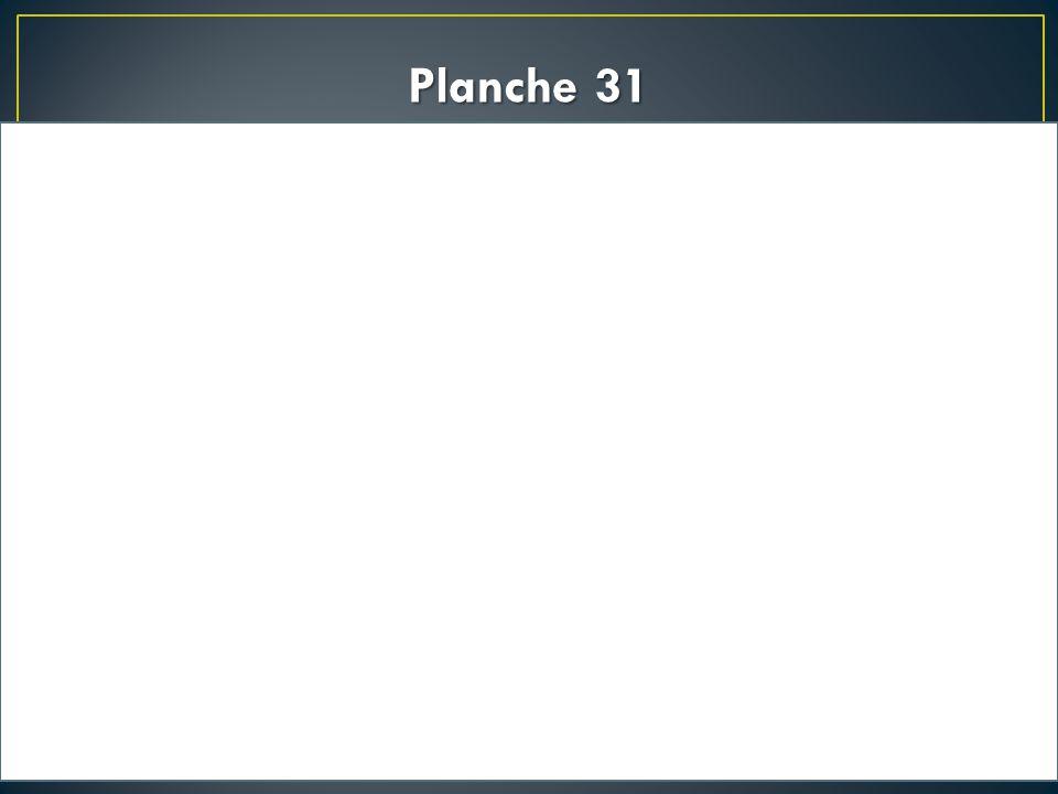 Planche 31
