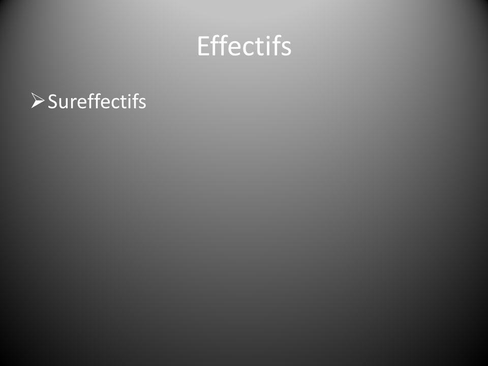  Sureffectifs