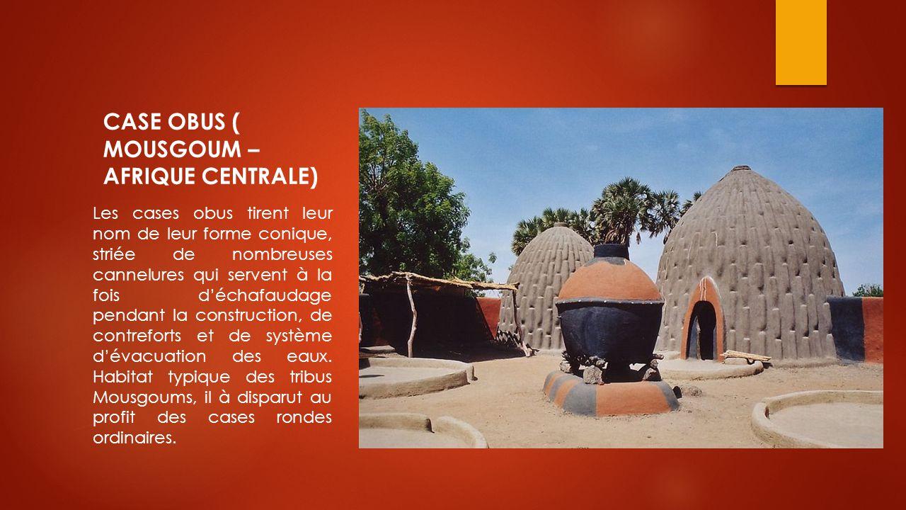 CASE OBUS ( MOUSGOUM – AFRIQUE CENTRALE) Les cases obus tirent leur nom de leur forme conique, striée de nombreuses cannelures qui servent à la fois d