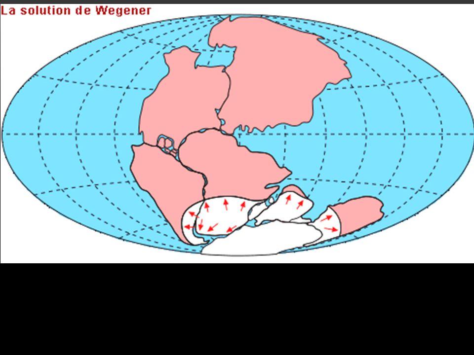 Pour WEGENER les continents rigides dériveraient sur les roches sous jacentes plus fluides.