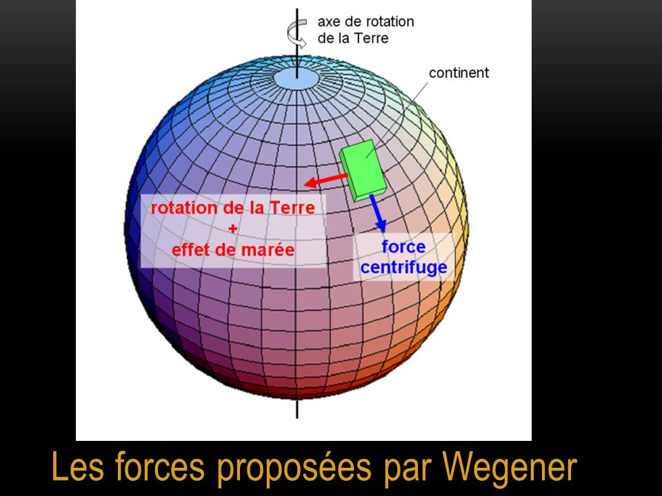 Les arguments de Wegener n'ont pas convaincu la communauté scientifique de l'époque car les forces proposées étaient bien trop faibles pour déplacer des continents au vu des connaissances acquises à cette époque sur la structure interne de la Terre