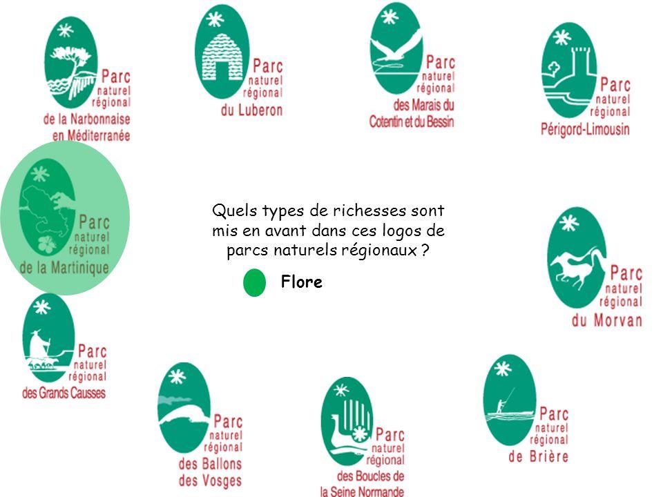 Quels types de richesses sont mis en avant dans ces logos de parcs naturels régionaux ? Flore