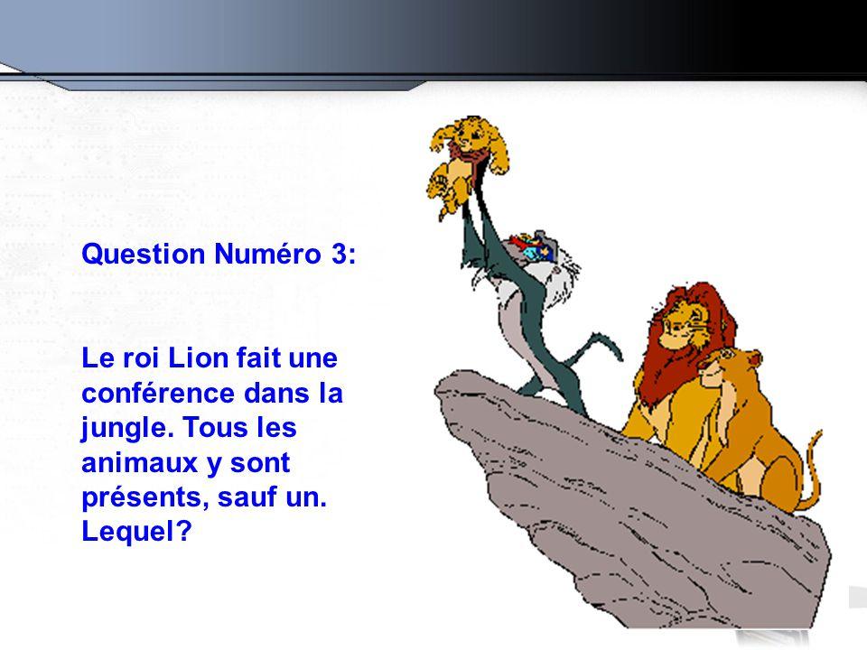 Question Numéro 3: Le roi Lion fait une conférence dans la jungle. Tous les animaux y sont présents, sauf un. Lequel?