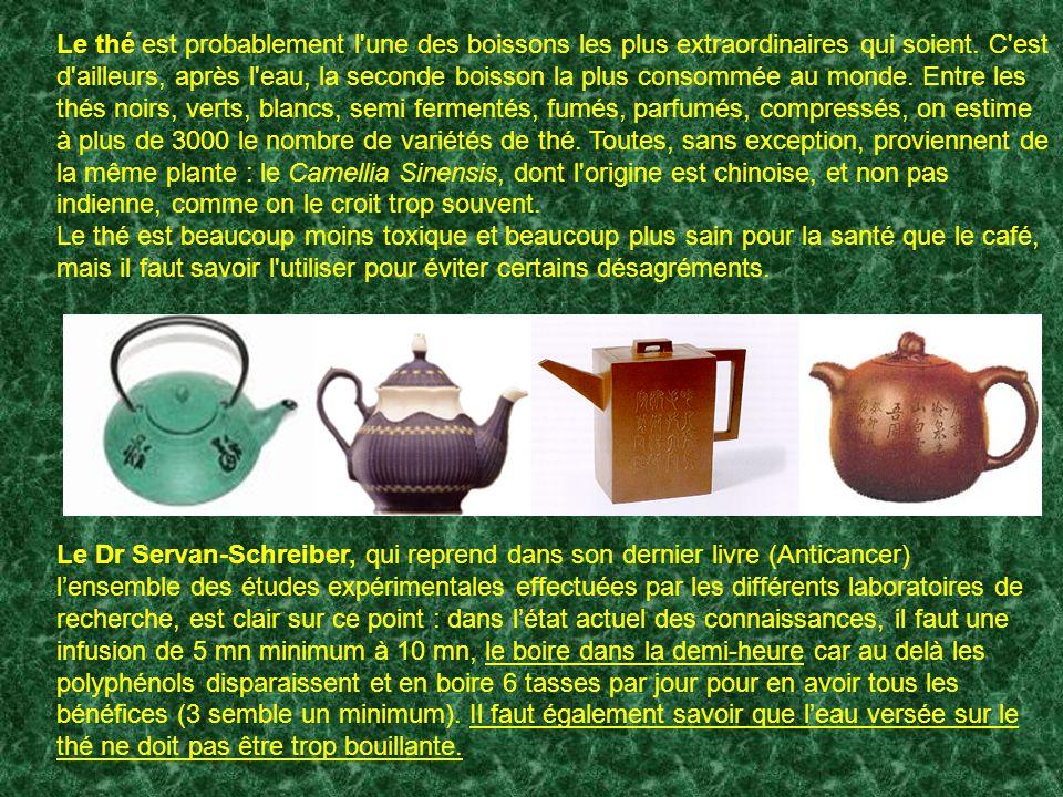 Le thé est probablement l une des boissons les plus extraordinaires qui soient.