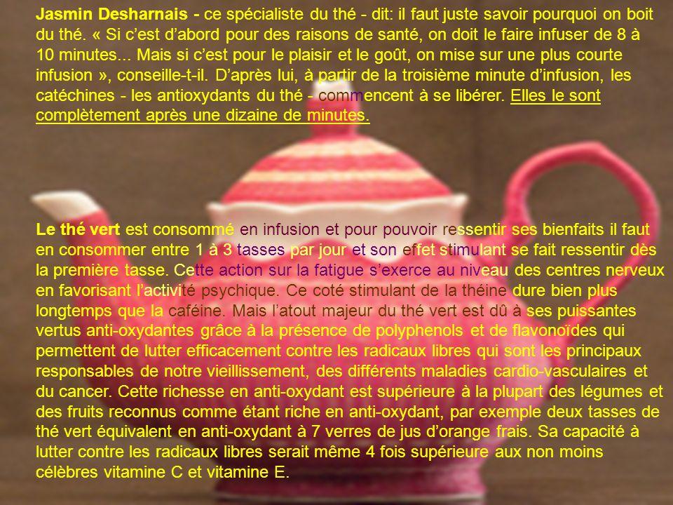 Jasmin Desharnais - ce spécialiste du thé - dit: il faut juste savoir pourquoi on boit du thé.