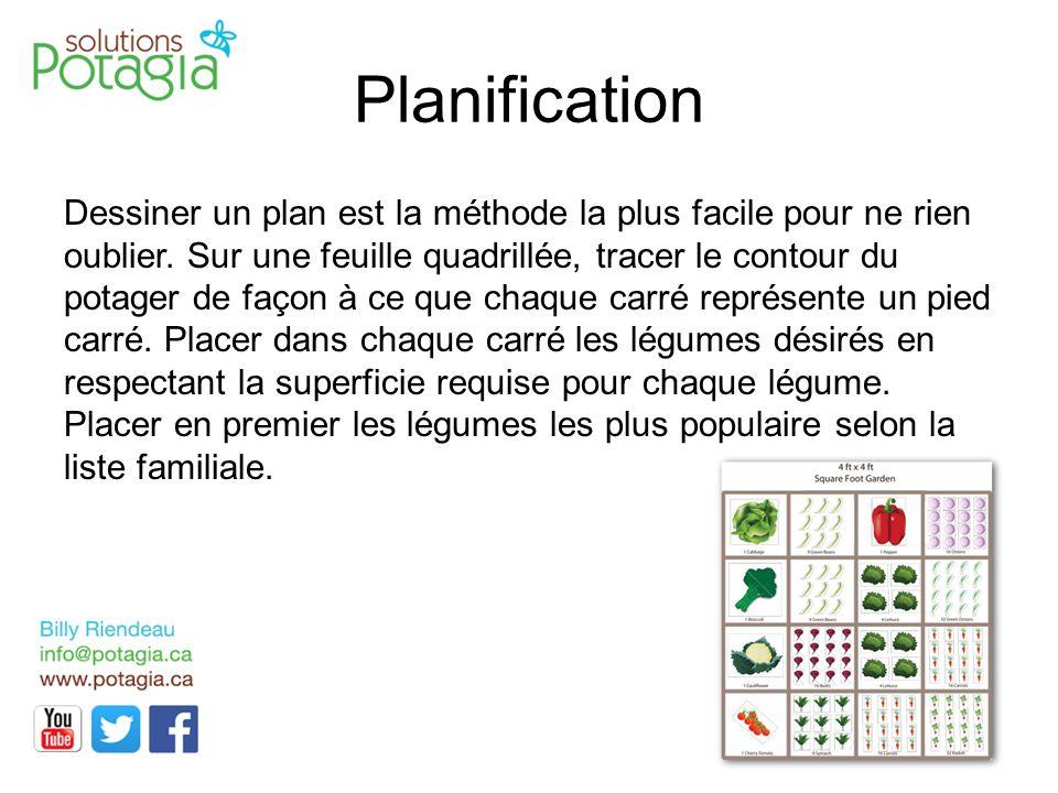 Planification Dessiner un plan est la méthode la plus facile pour ne rien oublier. Sur une feuille quadrillée, tracer le contour du potager de façon à