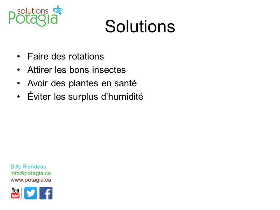 Solutions Faire des rotations Attirer les bons insectes Avoir des plantes en santé Éviter les surplus d'humidité