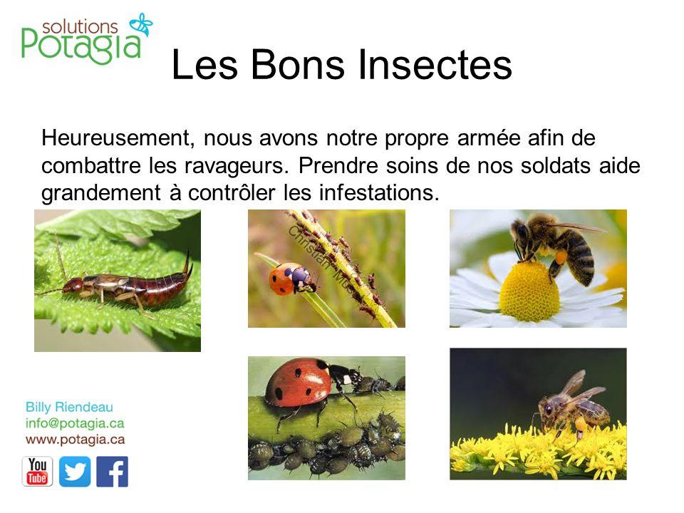 Les Bons Insectes Heureusement, nous avons notre propre armée afin de combattre les ravageurs. Prendre soins de nos soldats aide grandement à contrôle