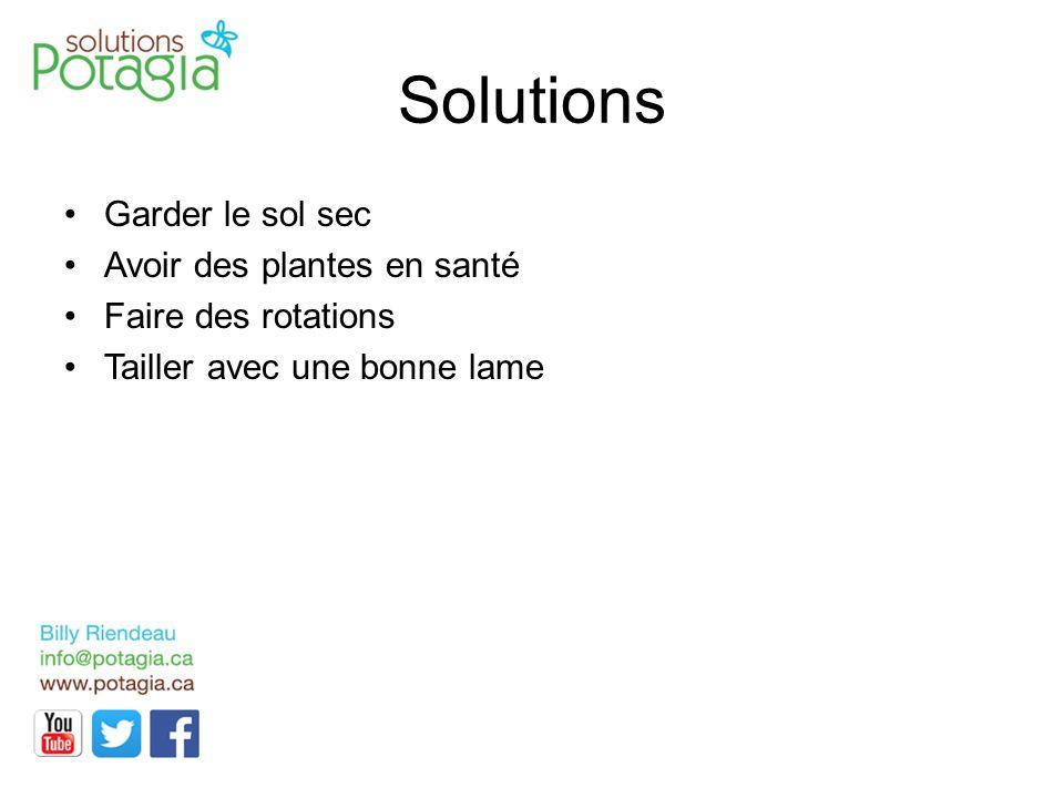 Solutions Garder le sol sec Avoir des plantes en santé Faire des rotations Tailler avec une bonne lame