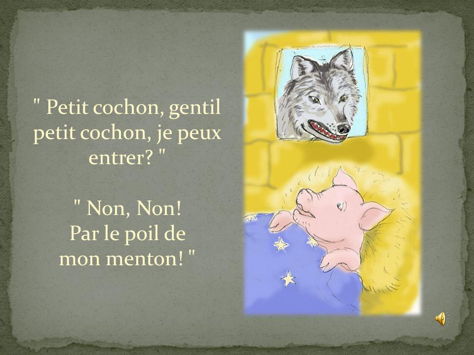 Petit cochon, gentil petit cochon, je peux entrer? Non, Non! Par le poil de mon menton!
