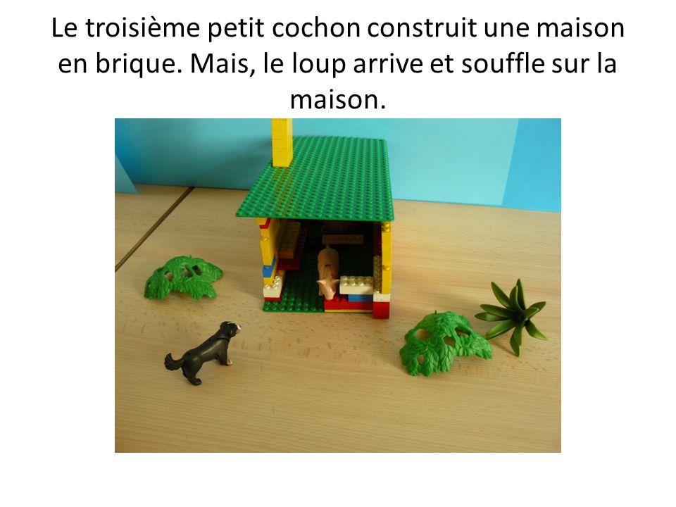 Le troisième petit cochon construit une maison en brique. Mais, le loup arrive et souffle sur la maison.