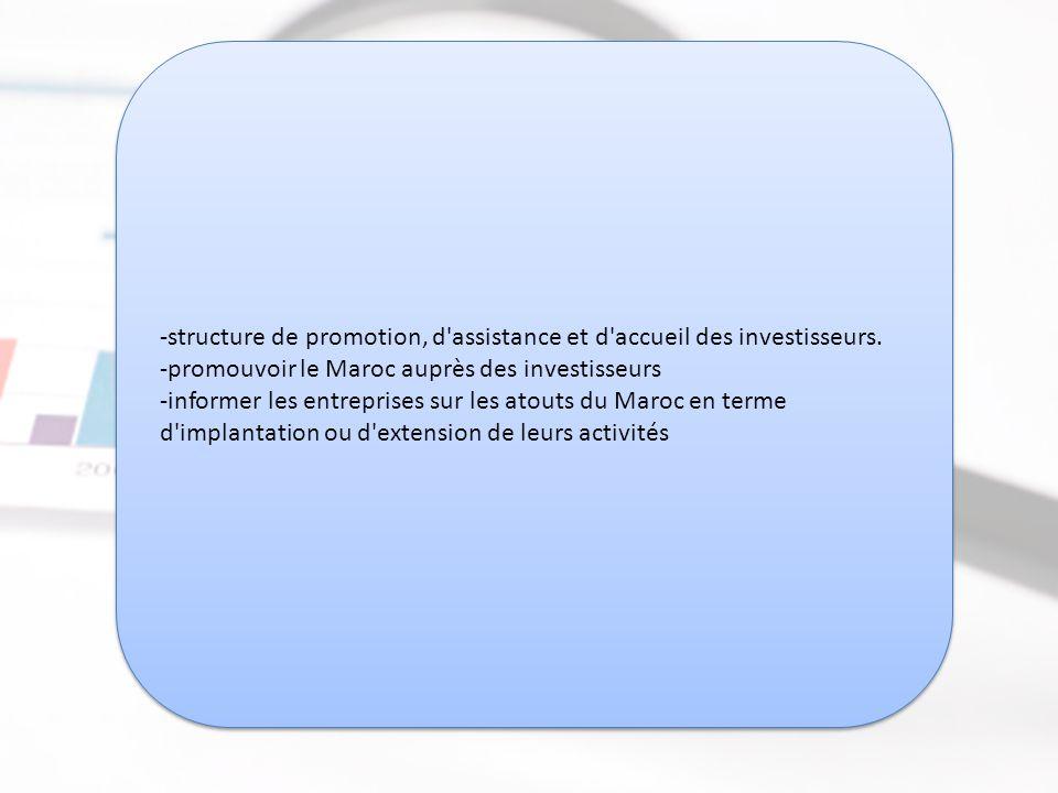 Direction des Investissements Extérieurs (DIE) -structure de promotion, d assistance et d accueil des investisseurs.