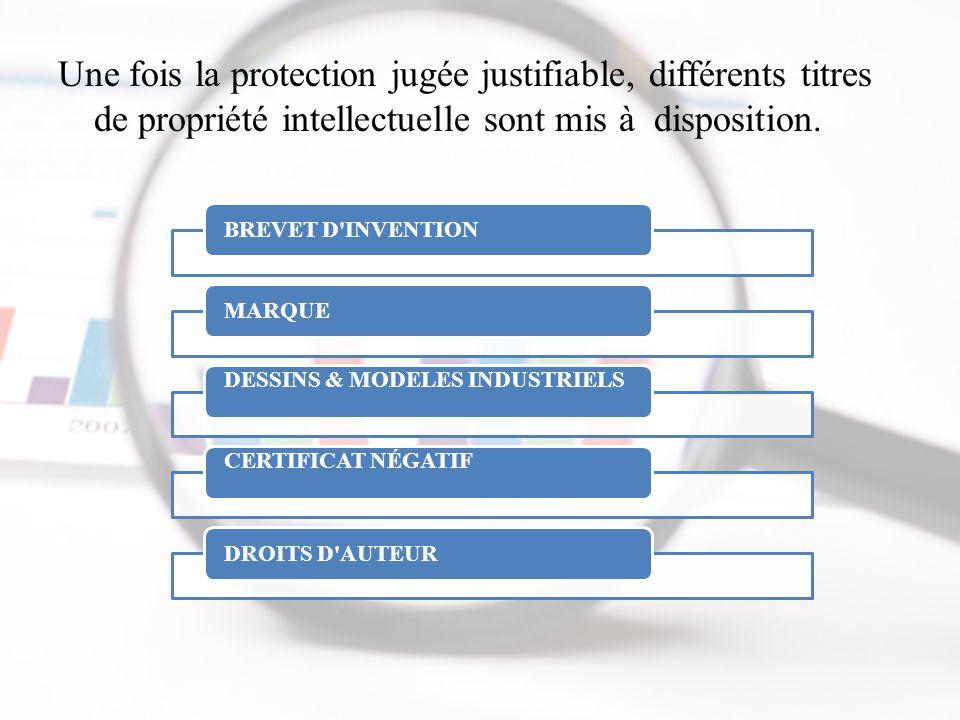 Une fois la protection jugée justifiable, différents titres de propriété intellectuelle sont mis à disposition.