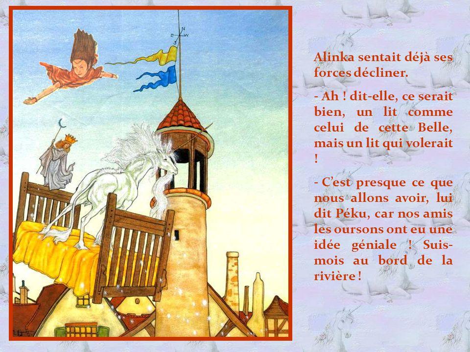 Vous l'avez compris, c'est le Château de la Belle au Bois Dor- mant .
