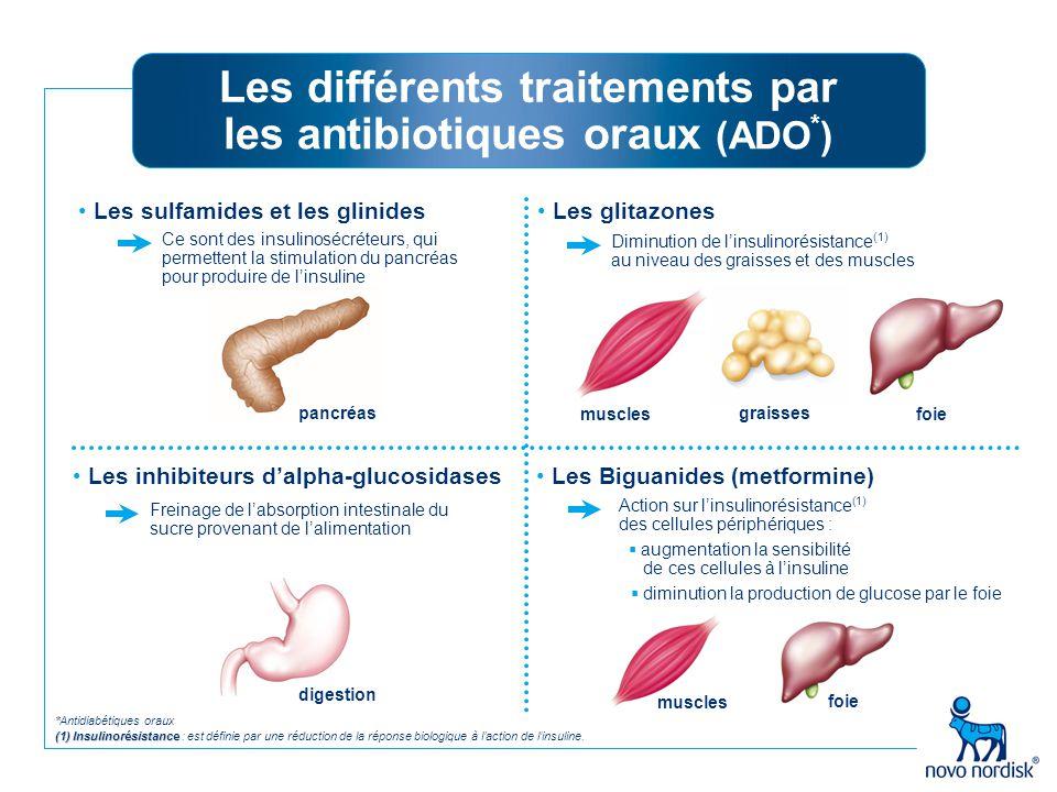 foie muscles Les inhibiteurs d'alpha-glucosidases Ce sont des insulinosécréteurs, qui permettent la stimulation du pancréas pour produire de l'insulin