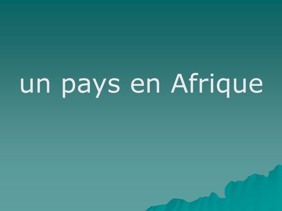un pays en Afrique