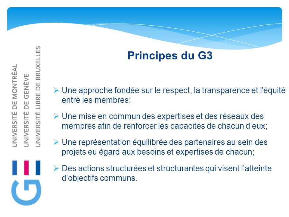 Principes du G3  Une approche fondée sur le respect, la transparence et l équité entre les membres;  Une mise en commun des expertises et des réseaux des membres afin de renforcer les capacités de chacun d'eux;  Une représentation équilibrée des partenaires au sein des projets eu égard aux besoins et expertises de chacun;  Des actions structurées et structurantes qui visent l'atteinte d'objectifs communs.