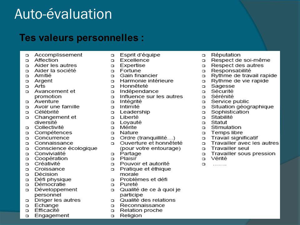 Auto-évaluation Tes valeurs de travail :  Tes valeurs de travail représentent tes sentiments envers le travail même et aussi sa contribution à la société.