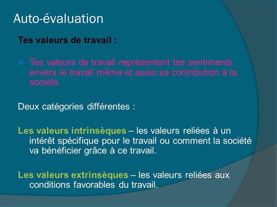 Auto-évaluation Tes valeurs de travail :  Tes valeurs de travail représentent tes sentiments envers le travail même et aussi sa contribution à la soc