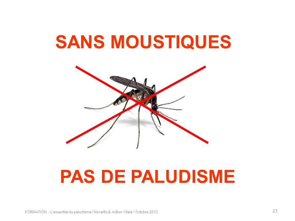 PAS DE PALUDISME SANS MOUSTIQUES 23 FORMATION : L'essentiel du paludisme / Novartis & Action Vitale / Octobre 2013