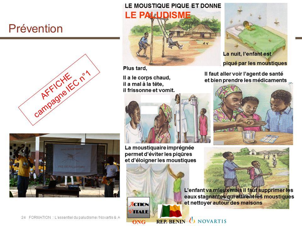 "Projet ""solidarité au Bénin"" | Fofo | SMC | Formation | 18.06.13 24FORMATION : L'essentiel du paludisme / Novartis & Action Vitale / Octobre 2013 AFFI"