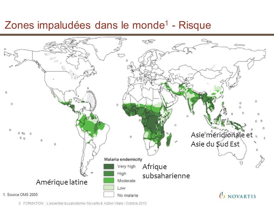 FORMATION : L'essentiel du paludisme / Novartis & Action Vitale / Octobre 20135 Amérique latine Afrique subsaharienne Asie méridionale et Asie du Sud