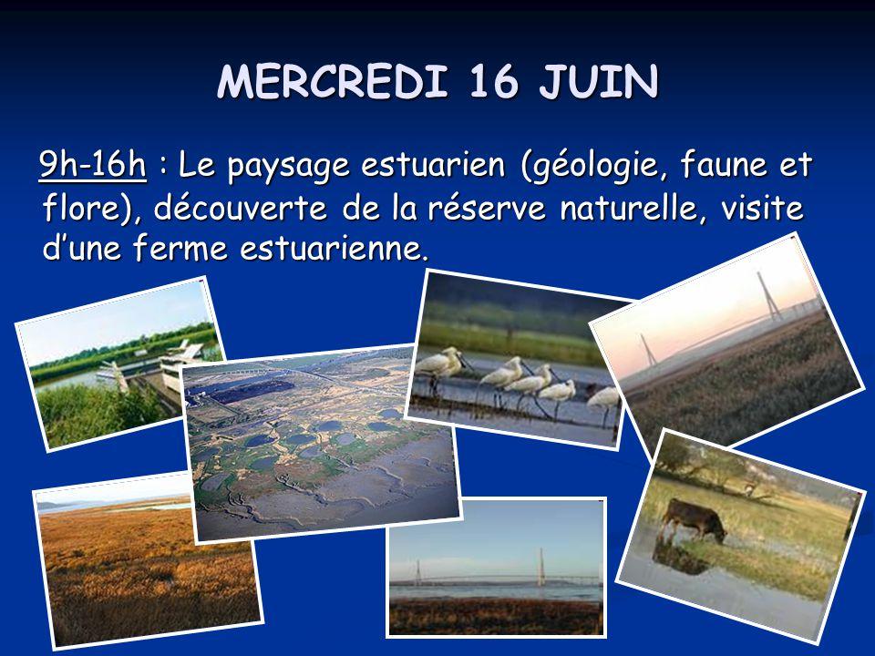 MERCREDI 16 JUIN 9h-16h : Le paysage estuarien (géologie, faune et flore), découverte de la réserve naturelle, visite d'une ferme estuarienne. 9h-16h