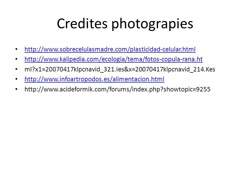Credites photograpies http://www.sobrecelulasmadre.com/plasticidad-celular.html http://www.kalipedia.com/ecologia/tema/fotos-copula-rana.ht ml?x1=20070417klpcnavid_321.Ies&x=20070417klpcnavid_214.Kes http://www.infoartropodos.es/alimentacion.html http://www.acideformik.com/forums/index.php?showtopic=9255