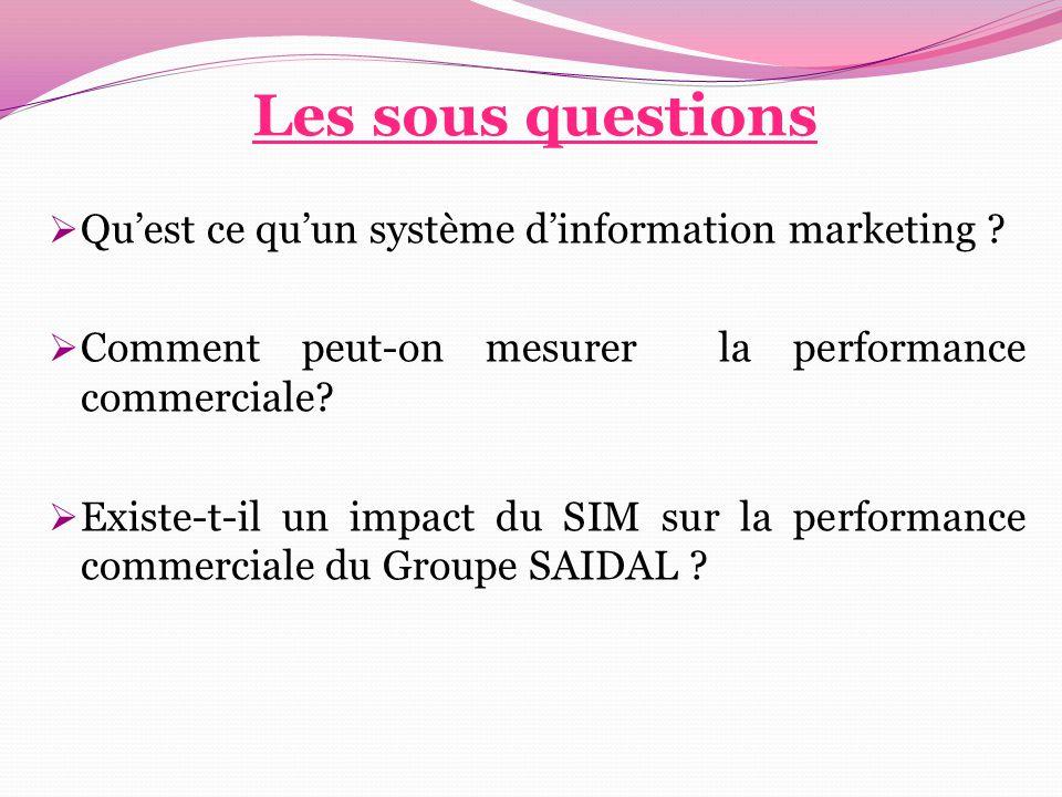 Les sous questions  Qu'est ce qu'un système d'information marketing ?  Comment peut-on mesurer la performance commerciale?  Existe-t-il un impact d