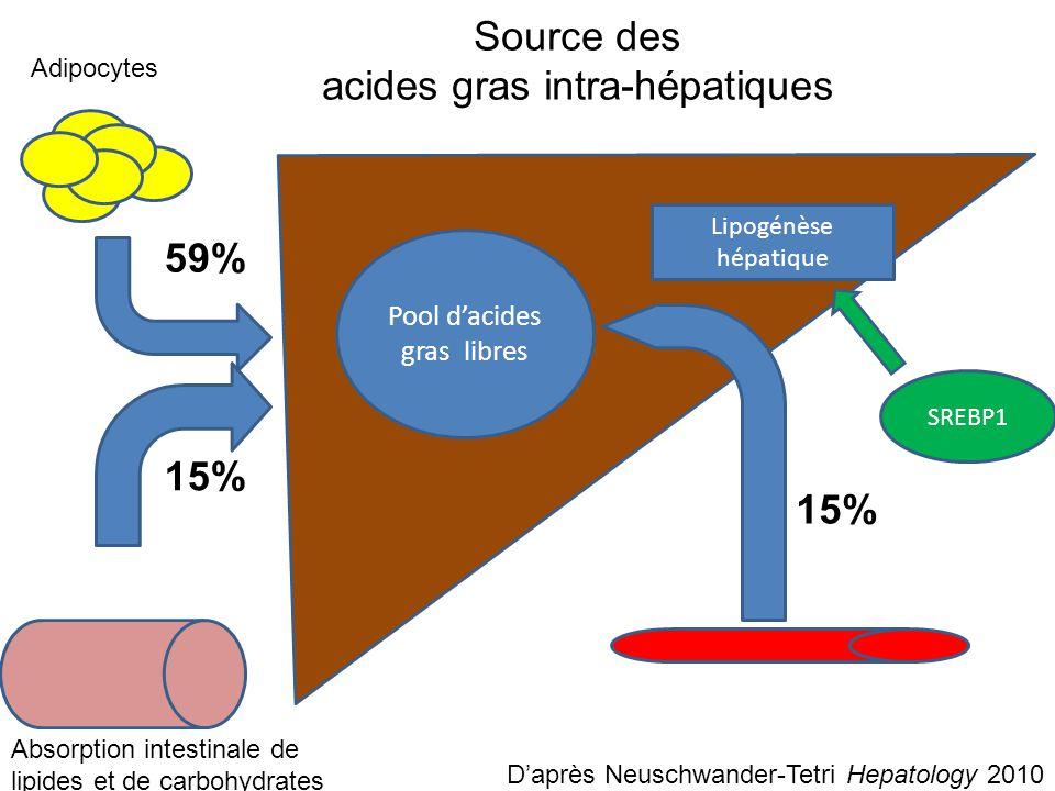 Acides gras libres Oxydation des AG ROS Gouttellettes lipidiques (triglycérides) D'après Neuschwander-Tetri Hepatology 2010 Intermédiaires cytotoxiques Prise en charge des acides gras intra-hépatique PNPLA-3 VLDL PPAR-a