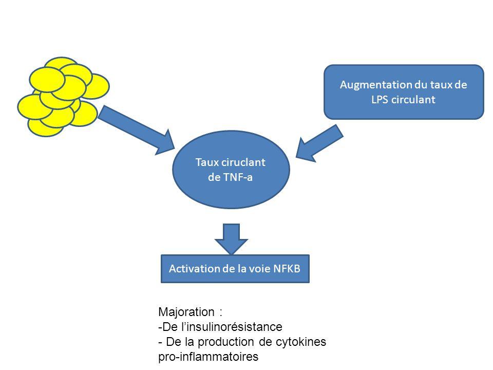 Modifications de la balance immunitaire chez les patients avec NASH