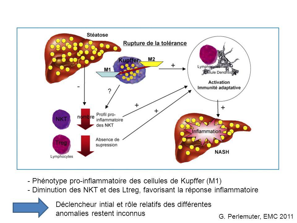Perspectives : 1)Diagnostique : 1)Pour distinguer la stéatose simple de la NASH 2)Thérapeutique : 1)Réduction pondérale 2)Anti-oxydants 3)Agonistes PPARgamma 4)Probiotiques 5)Système endocannabinoïde (anti-CB1, Rimonabant) 6)Fructooligosaccharide (pré-biotique)