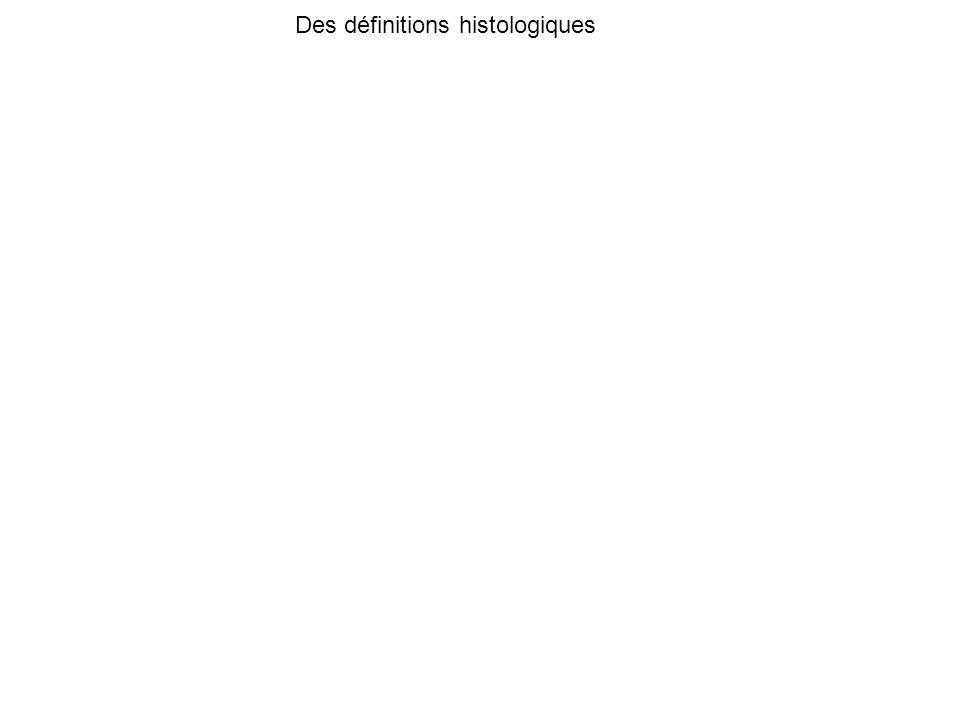 Bedossa et al hepatology 2012