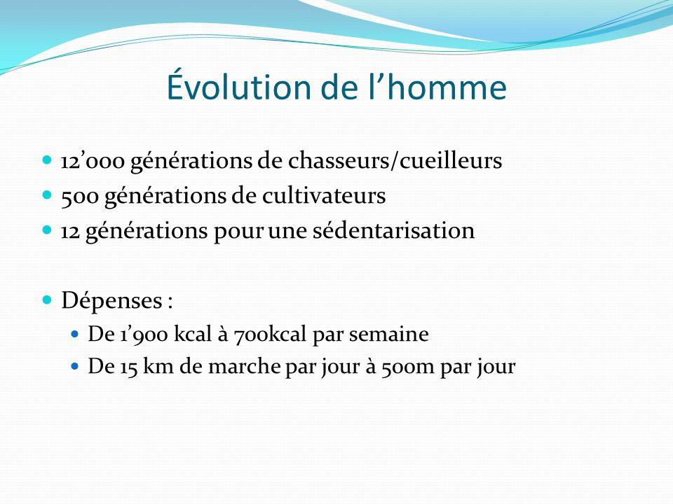 12'000 générations de chasseurs/cueilleurs 500 générations de cultivateurs 12 générations pour une sédentarisation Dépenses : De 1'900 kcal à 700kcal par semaine De 15 km de marche par jour à 500m par jour Évolution de l'homme