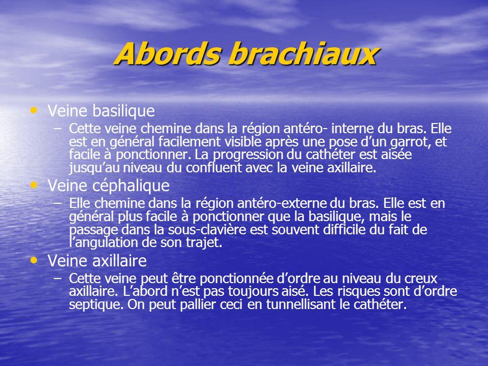 Abords brachiaux Veine basilique – –Cette veine chemine dans la région antéro- interne du bras. Elle est en général facilement visible après une pose