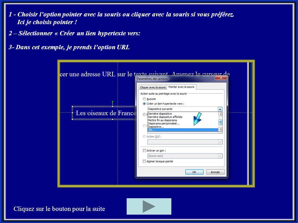 1 - Choisir l'option pointer avec la souris ou cliquer avec la souris si vous préférez.