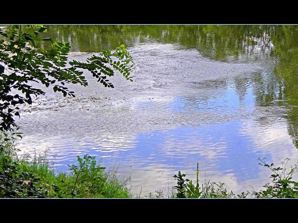 arvenue au fleuve où je me jetterai, puis à l'océan où je me noierai, je pourrai m'évaporer, devenir nuage et pluie qui tombera sur la terre d'Auvergne… Revivre le cours de mon enfance et de mon adolescence me plairait s'il demeurait sauvage.