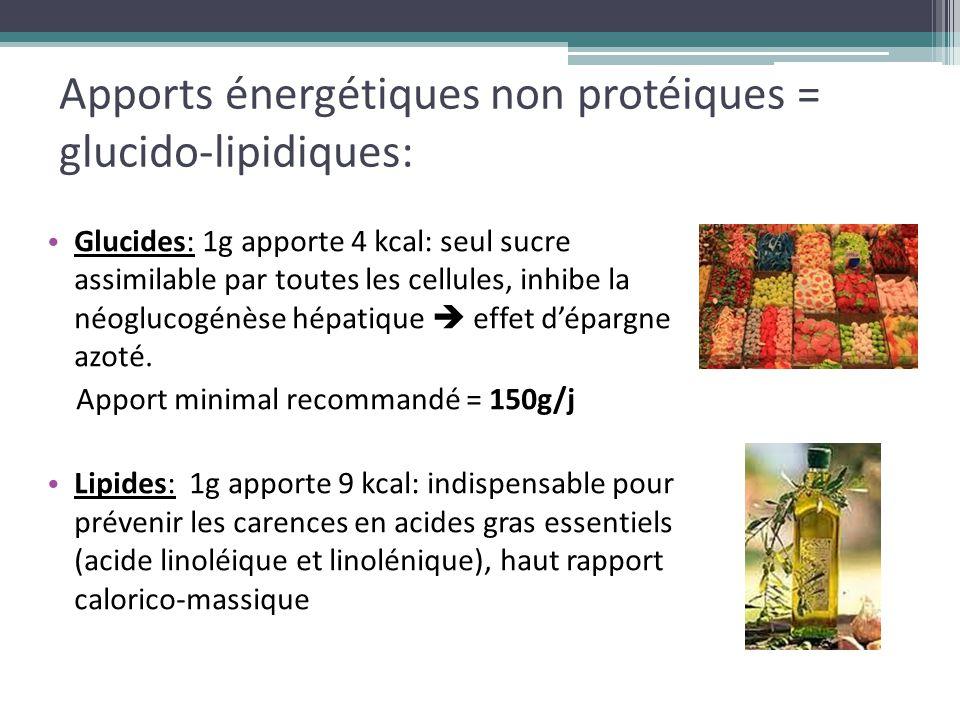 Apports énergétiques non protéiques = glucido-lipidiques: En pratique: 60% des calories doivent êtres apportées sous forme de glucides  4 à 5 g/kg/j: dose max: 5,5 g/kg/j 40% des calories doivent êtres apportées sous forme de lipides  0,6 à 0,8 g/kg/j: dose max: 2 g/kg/j Rq: ceci est valable uniquement pour la NPE de courte durée!