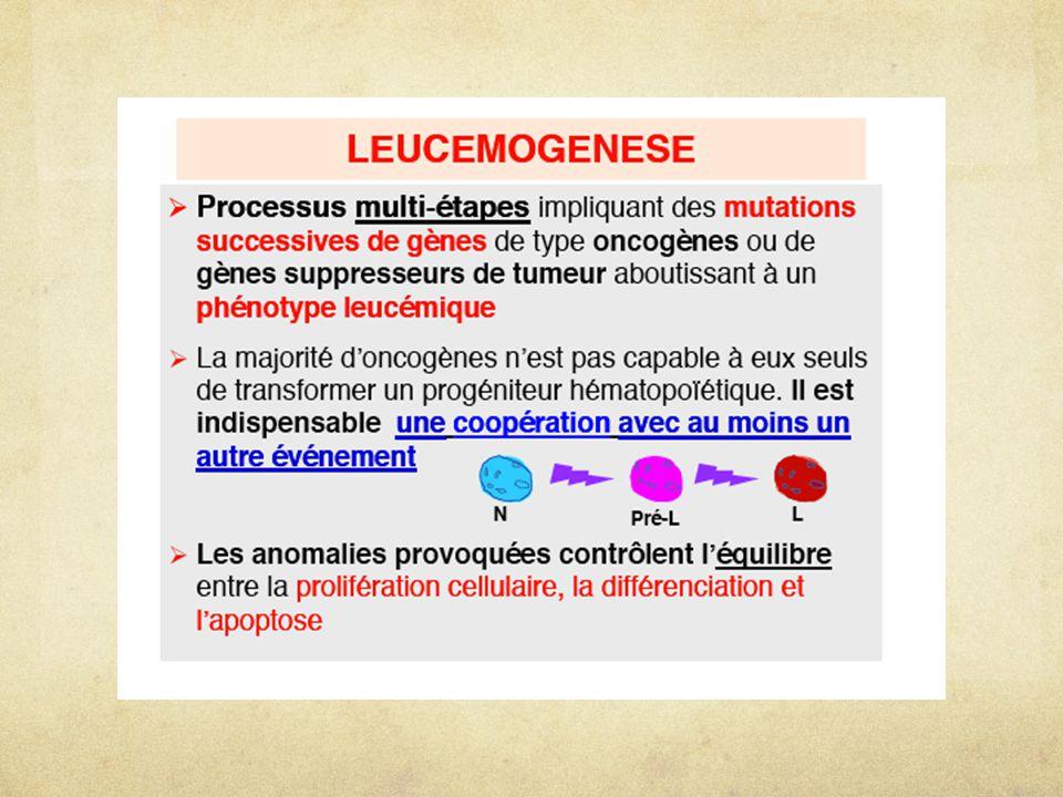A- approche générale Découverte d' ONCOGENES impliqués ds leucémogénèse Anomalies CYTOGENETIQUES Translocations inversions  65% cas  ACQUISES  CLONALES  RECURRENTES  parfois associées à certains type d'hémopathies, de façon systématiques T(8;14) LNH Burkitt T(9;22) LMC Conséquences MOLECULAIRES Gènes de fusion Protéines de fusion Surexpression d'oncogènes c-MYC sous promoteur IgH BCR-ABL c-MYC ABL Recherche d'autres oncogènes (atteints par des anomalies non détectables en CG)
