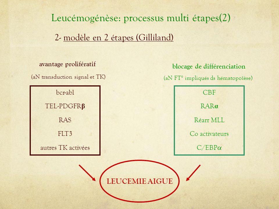 2- modèle en 2 étapes (Gilliland) CBF RAR α Réarr MLL Co activateurs C/EBP  blocage de différenciation (aN FT° impliqués ds hématopoïèse) bcr-abl TEL