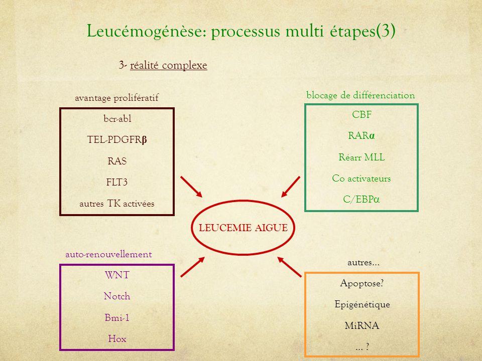 Leucémogénèse: processus multi étapes(3) 3- réalité complexe CBF RAR α Réarr MLL Co activateurs C/EBP  blocage de différenciation bcr-abl TEL-PDGFR β