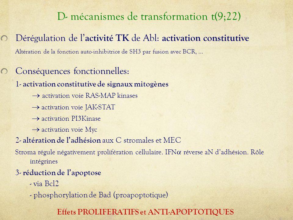 Dérégulation de l' activité TK de Abl: activation constitutive Altération de la fonction auto-inhibitrice de SH3 par fusion avec BCR, … Conséquences f