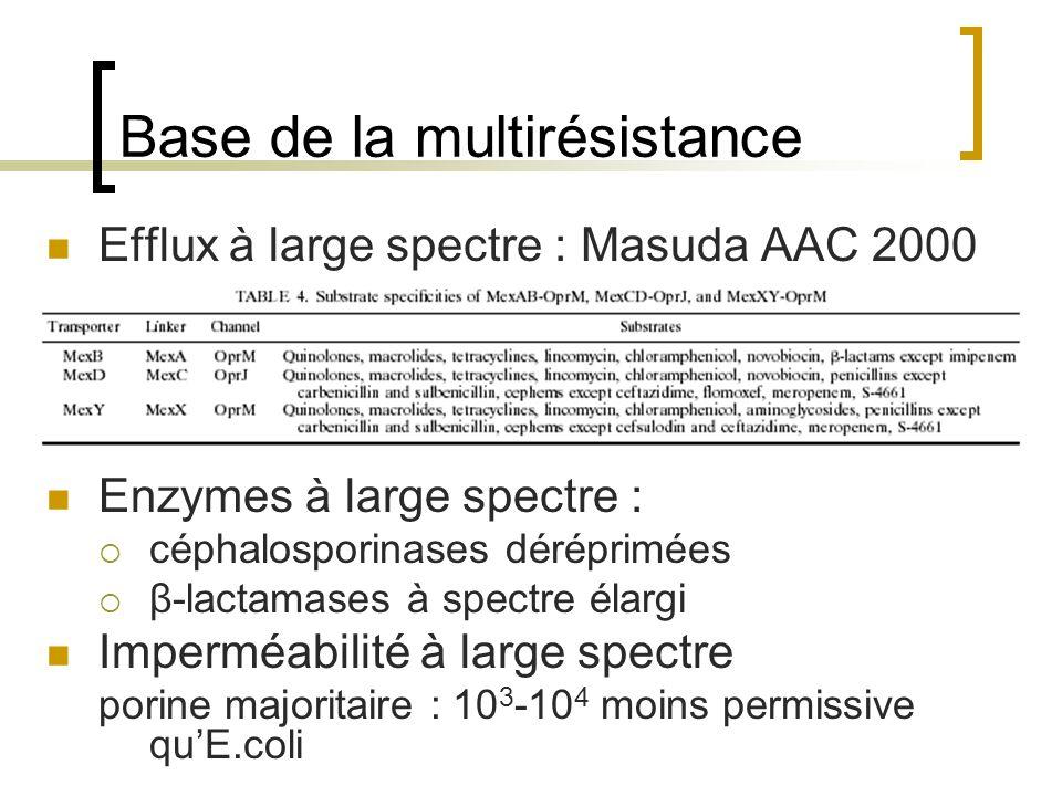 Base de la multirésistance Efflux à large spectre : Masuda AAC 2000 Enzymes à large spectre :  céphalosporinases déréprimées  β-lactamases à spectre
