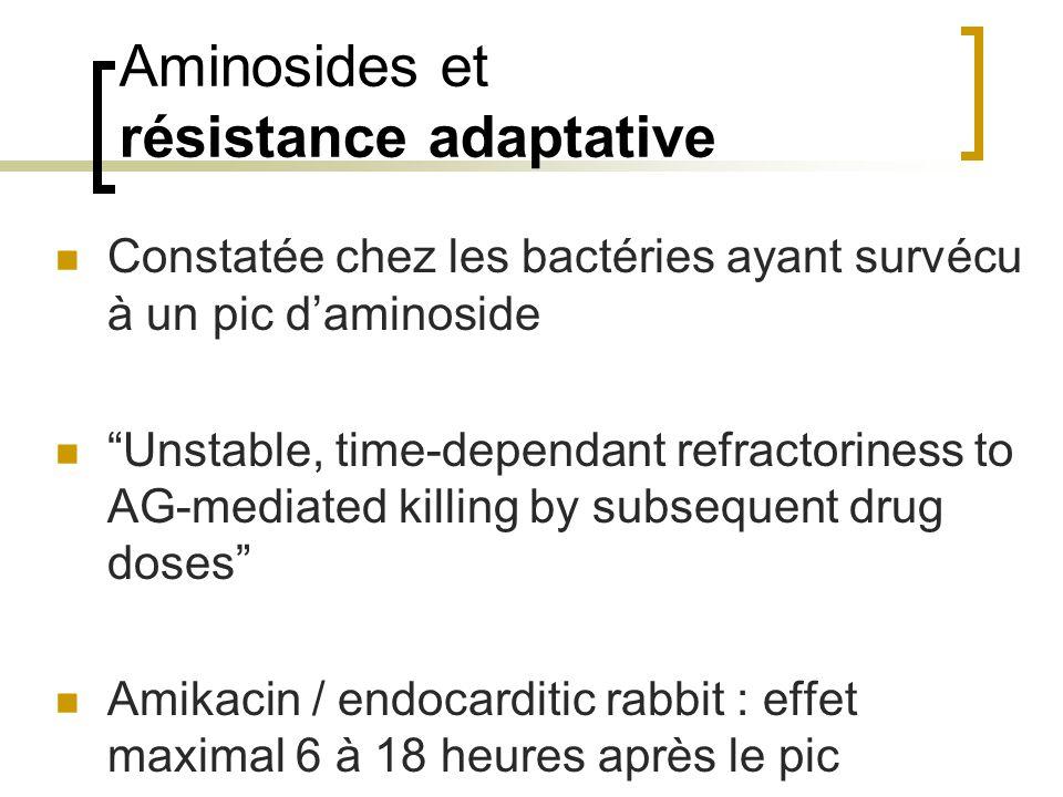 """Aminosides et résistance adaptative Constatée chez les bactéries ayant survécu à un pic d'aminoside """"Unstable, time-dependant refractoriness to AG-med"""
