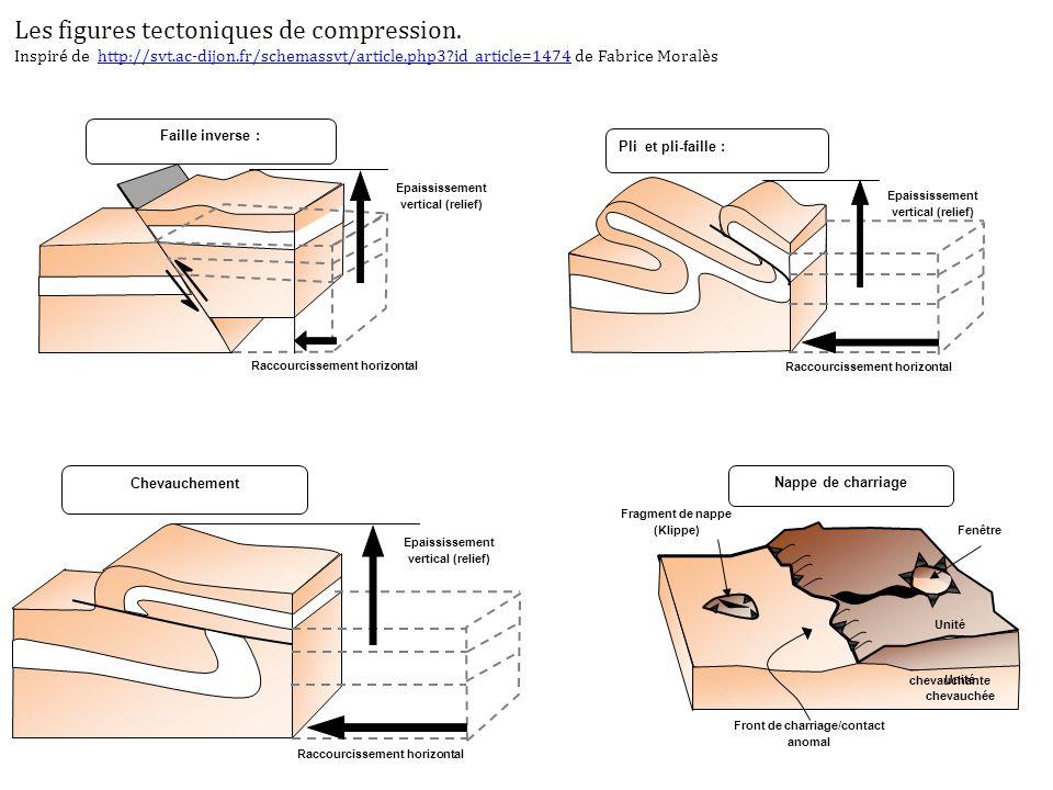 Epaississement vertical (relief) Chevauchement Raccourcissement horizontal Fragment de nappe (Klippe) Fenêtre Front de charriage/contact anomal Unité