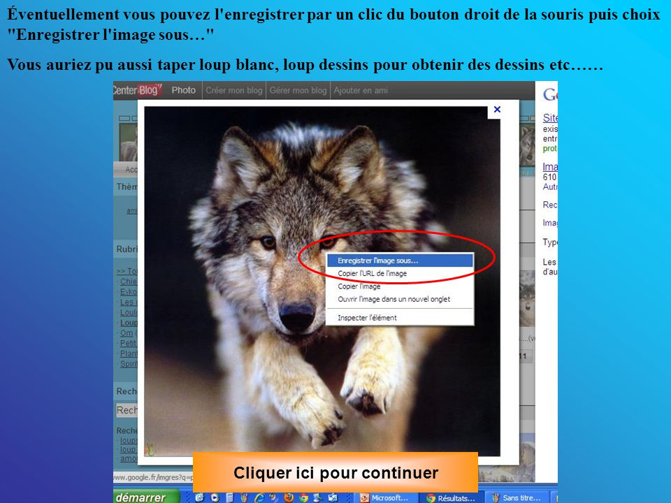 Éventuellement vous pouvez l enregistrer par un clic du bouton droit de la souris puis choix Enregistrer l image sous… Cliquer ici pour continuer Vous auriez pu aussi taper loup blanc, loup dessins pour obtenir des dessins etc……