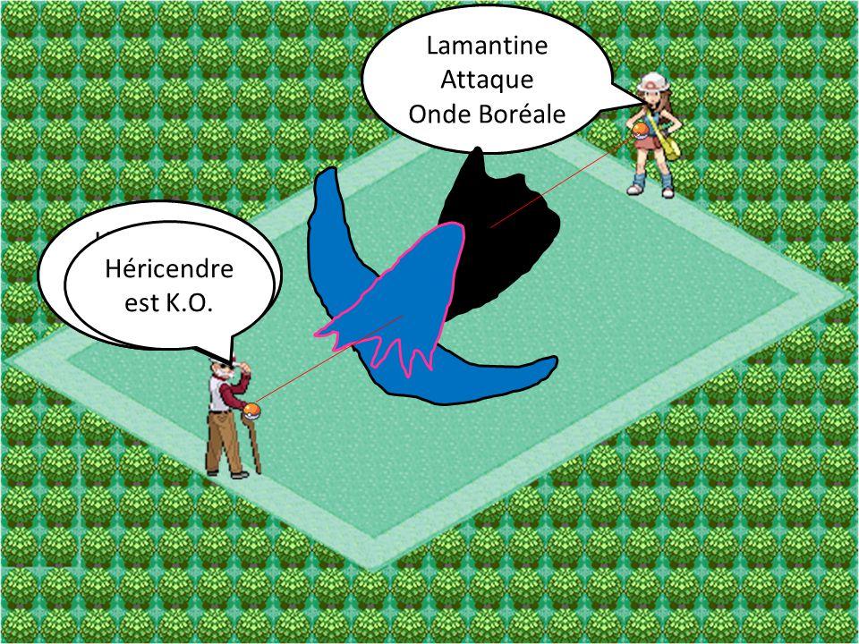 Lamantine Attaque Saumure Héricendre Attaque Vive-Attaque Lamantine Attaque Onde Boréale Héricendre Attaque Brouillard Héricendre est K.O.